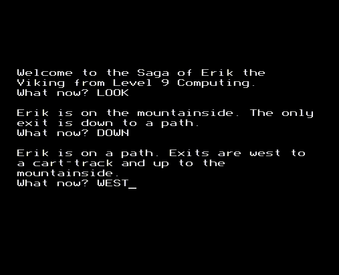 gameimg/screenshots/Disc043-SagaOfErikTheVikingSTT.png